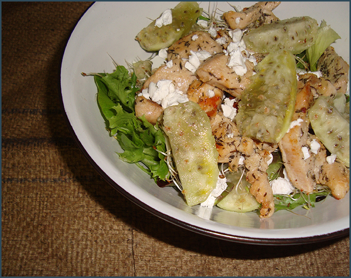 chicken-and-prickley-pear-salad-3