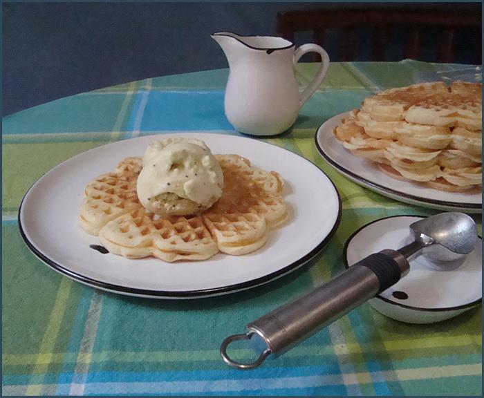 waffles-with-kiwi-ice-cream-and-white-choc-sauce-3