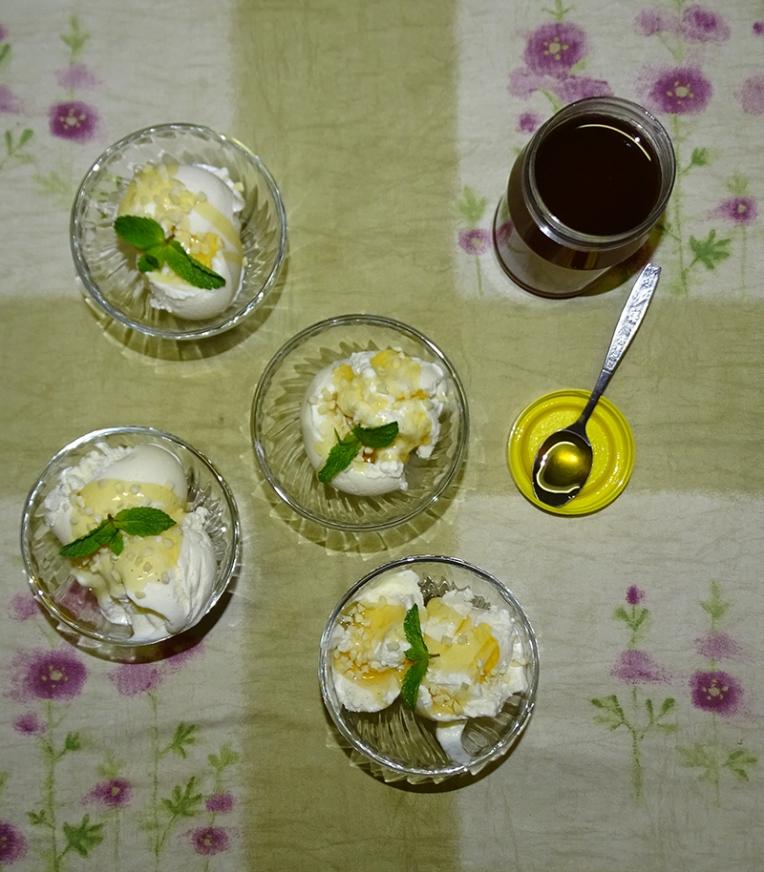 greek-frozen-yogurt-with-honey-and-almond-nibs-3