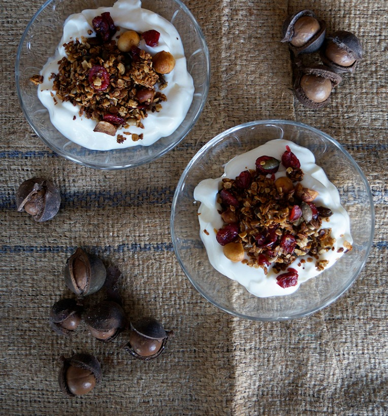 cranberry and macadamia granola 2