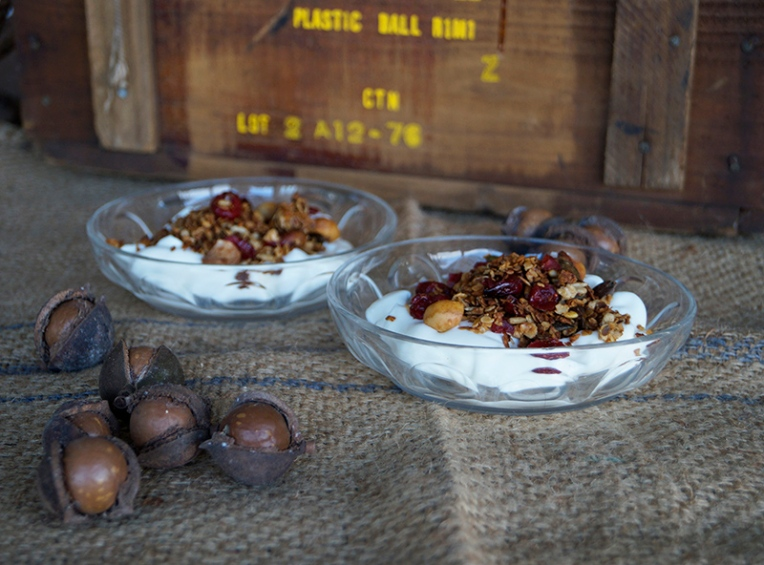 cranberry and macadamia granola 1