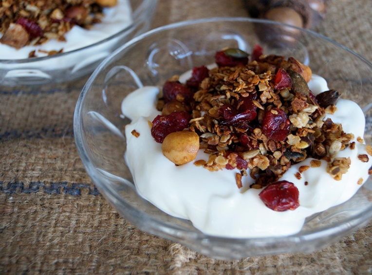 cranberry and macadamia granola 3